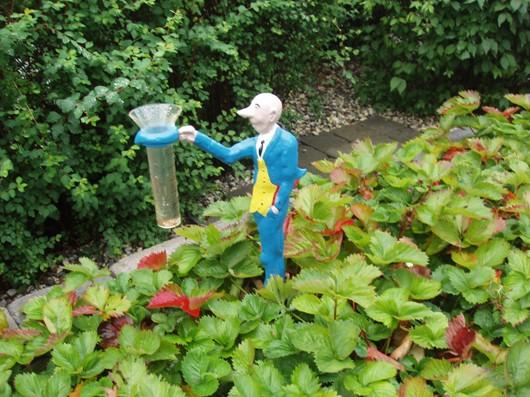 Nu råder höstlugn i trädgården...